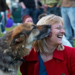 Dog enthusiastically greeting woman by kissing her face