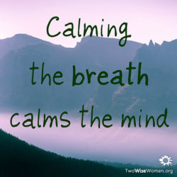 Calming the breath calms the mind