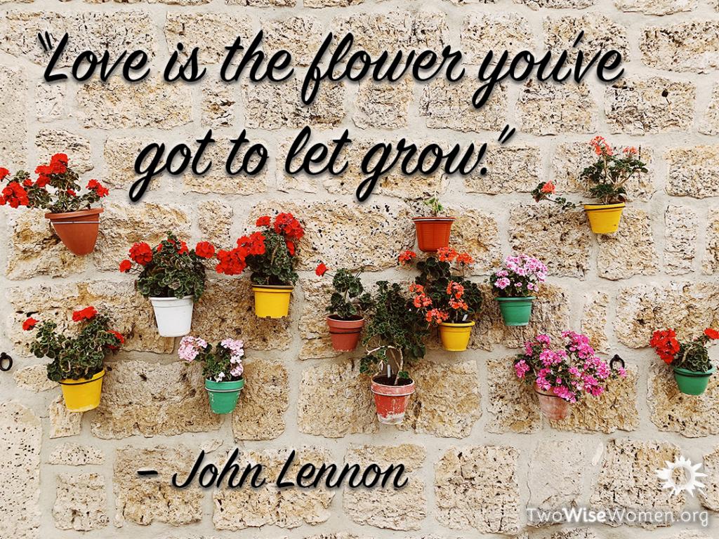 Love is the flower you've got to let grow. -John Lennon